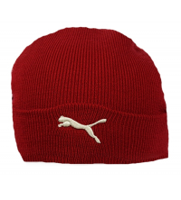 Puma: PUMA BIG CAT HAT 840219-01