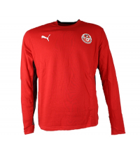 Pull PUMA NATIONAL TEAMS 08 - 734091-07