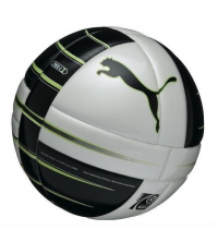 PUMA POWER CAT 1.10 STATEMENT (FIFA APPROVED)
