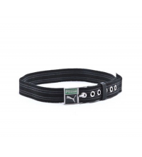 PATCH WEBBING BELT