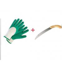 Pack gant anti-coupure + scie d'élagage