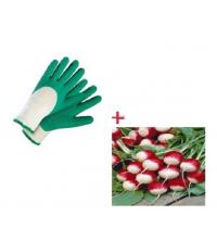 Pack gant anti coupure + 180 graine de radis