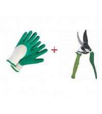 pack sécateur + gant anti coupure