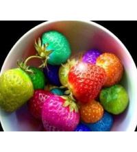 Lot 50 graines fraise mix color