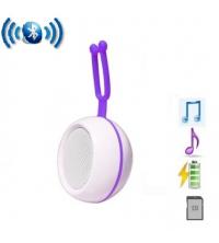 Haut parleur Sans Fil Bluetooth SP-M01 et lecteur carte micro SD