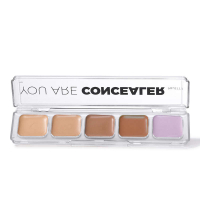 YOU ARE Palette de correcteurs
