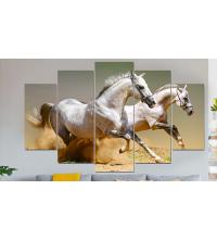 Set Tableaux 5 pièces chevaux blanc
